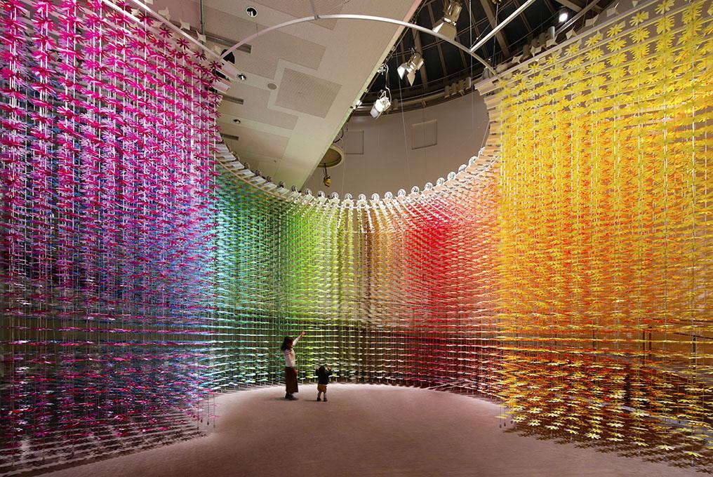 IMABARI Color Show