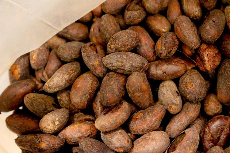 焙煎したカカオ豆