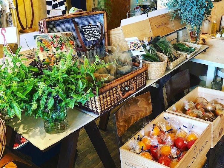 京都 Reveile 京野菜 イベント