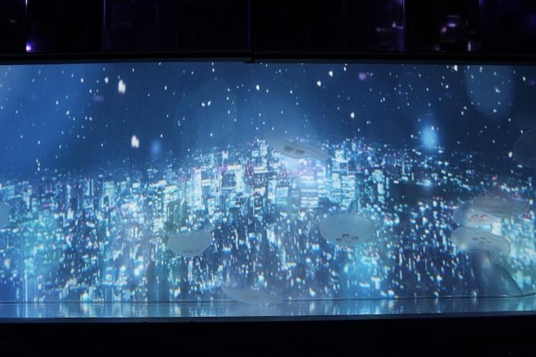 雪とクラゲ すみだ水族館 万華鏡トンネル