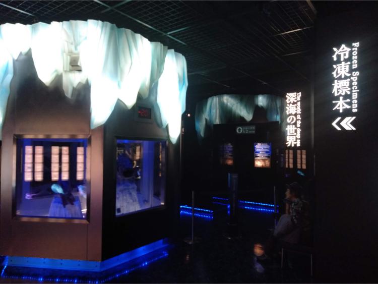 沼津港深海水族館シーラカンス・ミュージアムのシーラカンスの冷凍展示室